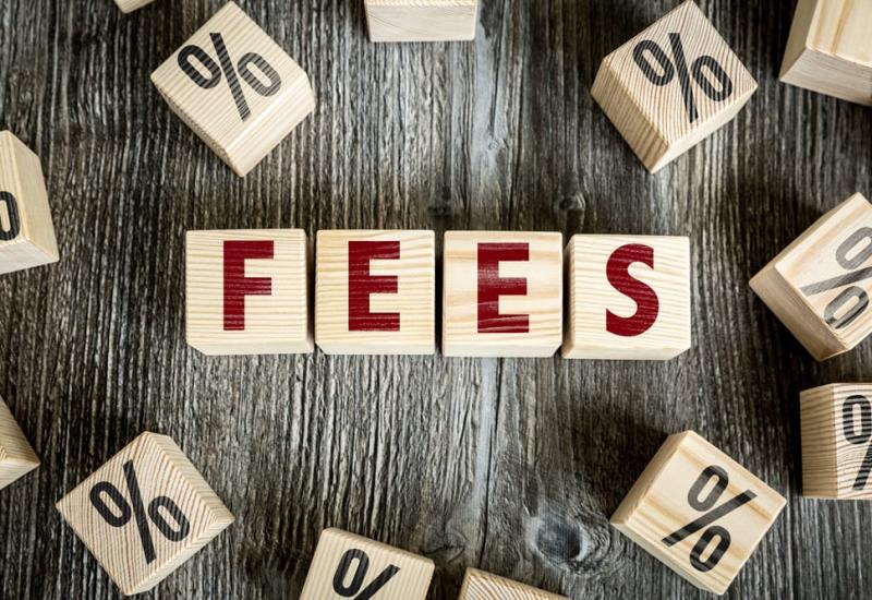 card-network-fees-visa-mastercard